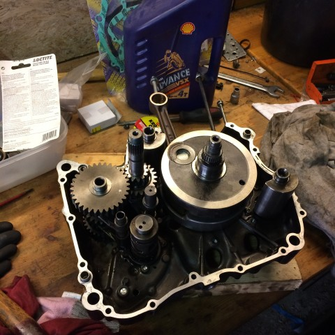 Reassembled the gearbox and balancershafts